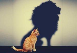 Faça Uma Avaliação de Si Mesmo Para a Sua Autoestima